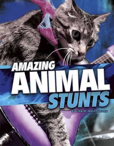 Amazing Animal Stunts (Wild Stunts)