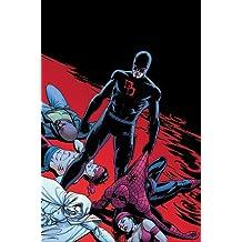 Daredevil T22: shadowland