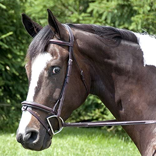 Exselle Elite Elite Elite High raised Fancy Stitched Bridle, AEBD760CD, Dark Havana, Cob | Numeroso Nella Varietà