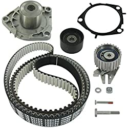 SKF VKMC 05193 Timing belt and water pump kit