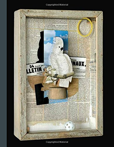 Birds of a Feather - Joseph Cornell's Homage to Juan Gris por Mary Clare McKinley