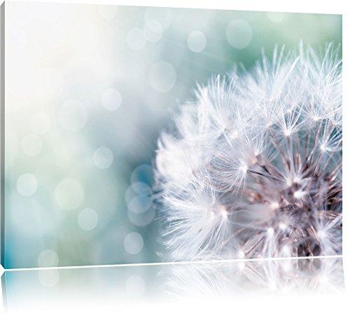 Zauberhafte Pusteblume, Format: 100x70 auf Leinwand, XXL riesige Bilder fertig gerahmt mit...