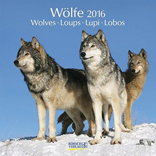 Wölfe 2016: Broschürenkalender mit Ferienterminen