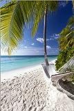 Leinwandbild 120 x 180 cm: Hängematte an Malediven-Strand von Sakis Papadopoulos/Robert Harding - fertiges Wandbild, Bild auf Keilrahmen, Fertigbild auf Echter Leinwand, Leinwanddruck