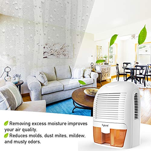 Hysure Deumidificatore Casa 1500ml Piccolo Elettrico Silenziono Basso  Consumo Muffa con Indicatore LED Spegnimento Automatico per Camera da Letto  ...