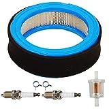 JJDD Pre Filter Pre Filter Bougie d'allumage pour Filtre à Carburant Briggs &...