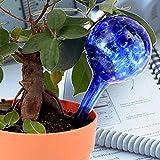 Bluelover 3pcs jardin verre ballon goutte-à-goutte arrosage outil en pot plante Irrigation contrôleur