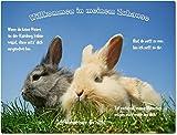 """Blechschild / Warnschild / Türschild - Aluminium - 15x20cm - - """"Willkommen in meinem Zuhause"""" - Motiv: Kaninchen zwei Tiere nebeneinander im Gras -- 01"""