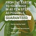 Vitamin B12 1000μg Tabletten von Nutritrust® - 400% mehr B12 als bei anderen führenden Marken - hochwirksame Vollwertkost Wirkstoffformel mit einer erhöhten Bioverfügbarkeit GMP zertifiziert
