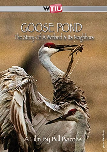 Goose Pond: The Story of a Wetland and Its Neighbors