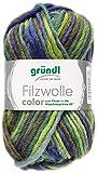Gründl Filzwolle Color 50g (Grün Blau 22)