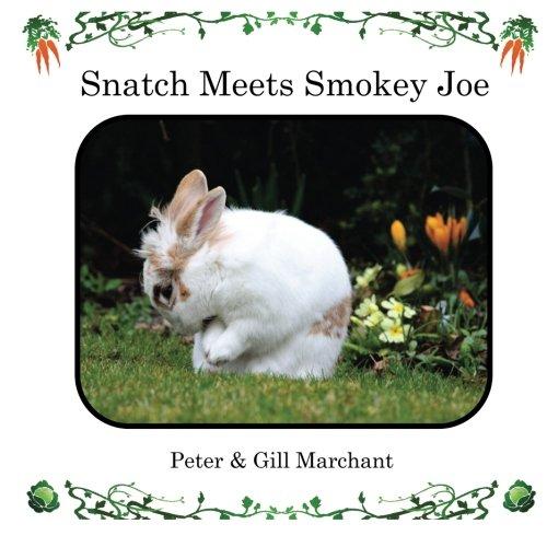 Preisvergleich Produktbild Snatch Meets Smokey Joe