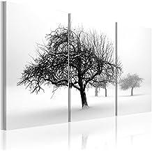 Impresion en calidad fotografica + 3 partes + Naturaleza + cuadro 030212-5 + 60x40 cm +++ GRAN VARIEDAD DE CUADROS Y IMPRESOS ARTÍSTICOS EN NUESTRA TIENDA VIRTUAL +++