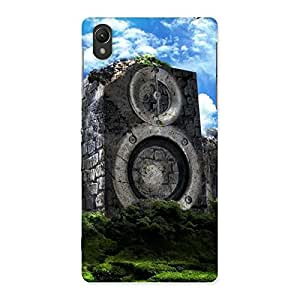 Gorgeous Speaker Of Rocks Back Case Cover for Sony Xperia Z2