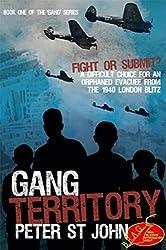 Gang Territory (Gang Books Book 1)