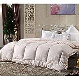 Bettdecke, Warme Duo Winter-Qualitäts-Bettdecke Für Die Kalte Jahreszeit, Soft-Komfort-Bettdecke, Kochfeste Steppdecke, Atmungsaktiv Wärmeausgleichend, Füllgewicht: 1.4+2.5kg,Pink-200 * 240cm