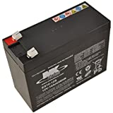 12V 10Ah MK Sealed Lead Acid (AGM) Mobility Scooter Battery