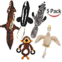 Lobeve 5 Pack Dog Squeaky Toys Three No Stuffing Toy and Two Plush with Stuffing for Small Medium Dog Pets