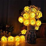 LED Lichterkette,LED Weihnachtsbeleuchtung,LED Rosen Lichterkette, 3M 20 Led