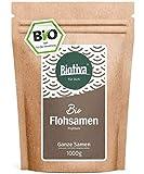 Flohsamen Bio 1kg, ganz - 1000g - 99% Reinheit - Laktosefrei, Glutenfrei, vegan - Abgefüllt und kontrolliert in Deutschland (DE-ÖKO-005)