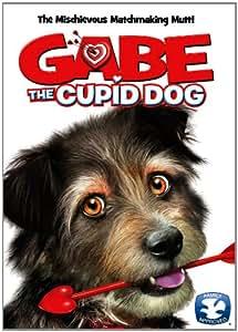 Gabe the Cupid Dog [DVD] [2012] [Region 1] [US Import] [NTSC]