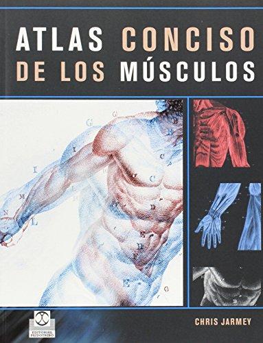 ATLAS CONCISO DE LOS MÚSCULOS (Color) (Medicina) por Chris Jarmey