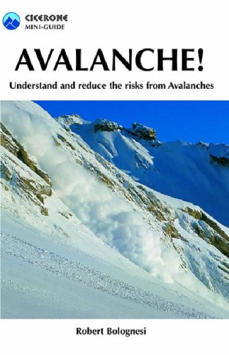 Avalanche!: Understand and Reduce Risks from Avalanches: Understand and Reduce the Risks from Avalanches (Cicerone Mini-guides) por Robert Bolognesi