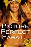 Picture Perfect Hawaii (English Edition)