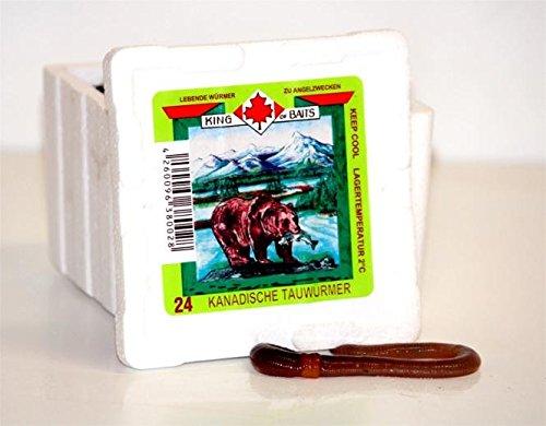 Kanadische Tauwürmer Angelköder DAS ORIGINAL MEGADEAL 240 Stück in der Styrobox