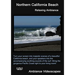 Northern California Beach - Relaxing Ambiance