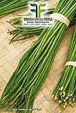 180 Aprox- Semillas Green Climbing Bean Mangiatutto Metro Seed Black - Dolichos sesquipedalis En paquete original Made in Italy - Frijoles verdes trepadores - semillas negras