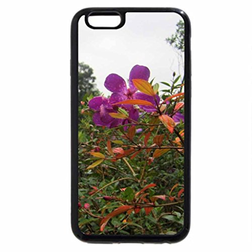 iPhone 6S / iPhone 6 Case (Black) Mountain trail