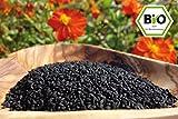 Naturherz Bio Schwarzkümmel - Original ägypt. Nigella sativa in Premiumqualität (500 g)