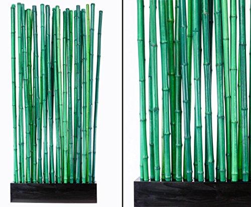 Bambus Raumteiler 'Paris2' mit ca. 90x12x205cm, Sockel und 27 Rohre grün 2,8- 3,5cm -...