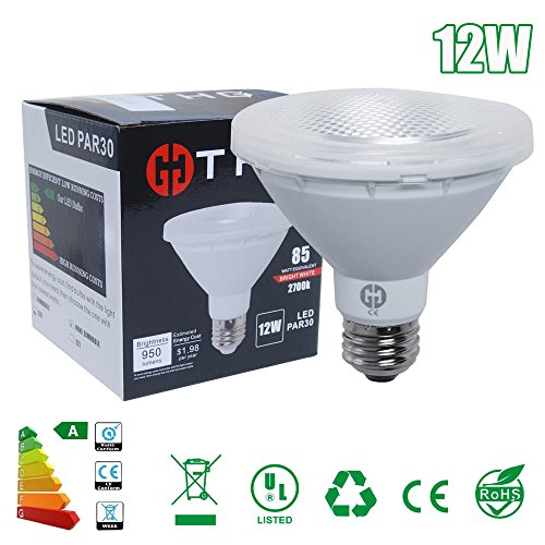 THG 2er Set Par30 COB LED Spot light E26 plug 950LM 12W non-Dimmable - Non-plug