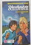 Das Phantom von Schreckenstein. Bd. 22