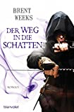 Der Weg in die Schatten: Roman (Schatten-Trilogie (Night Angel), Band 1)
