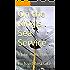 On the King's Sea Service: A John Phillips Novel (War at Sea Book 1)