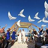 sotoboo 10Tauben Taube Form Folie Ballons, Hochzeit Party Decor Weiß Taube Folie Ballon Peace Bird Ballon Helium Ballon aufblasbar Air Luftballons für Mrriage Party Fotografie Prop Hintergrund Netzteil