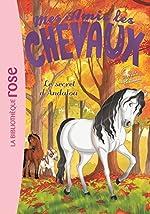 Mes Amis les Chevaux - Volume 19 - Le Secret d'Andalou de Sophie Thalmann
