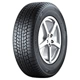 Gislaved Eurofrost 6 ( 205/60 R16 96H XL )