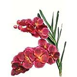 Arte piante Vanda orchidea{2} germogli 60 cm scuro-rosso invecchiato in tessuto decorativo per piante prezzo speciale