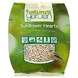 Natur Garten-Sonnenblume-Herzen (700g) - Packung mit 2