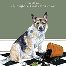 Ride the Little Dog cartolina di auguri non fosse Me