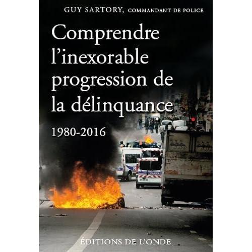 Comprendre l'inexorable progression de la délinquance, 1980-2016