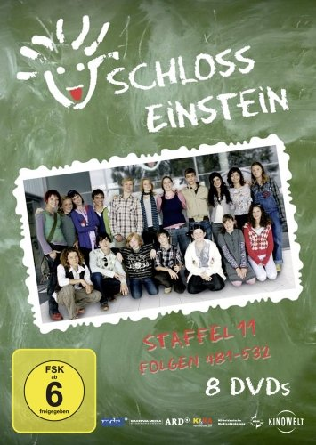 Staffel 11 (8 DVDs)
