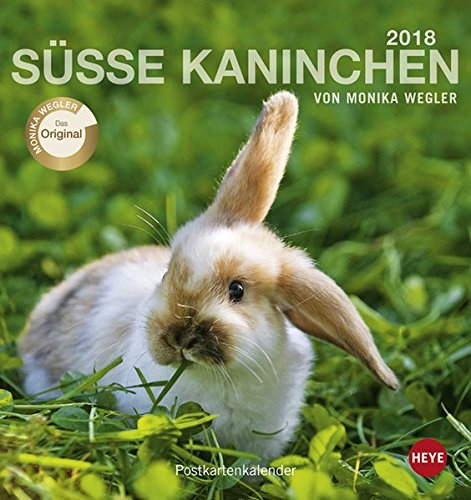 Kaninchen Postkartenkalender - Kalender 2018
