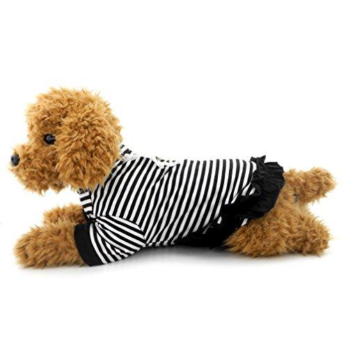 ranphy Kleiner Hund Katze Tank T-Shirt Sommer Chihuahua Kleidung für Mädchen gestreift Hund Shirt Kleid Spitze Trim Bundfaltenhose T-Shirt (Baumwolle Tank Trim)