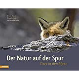Der Natur auf der Spur: Tiere in den Alpen