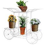 Dazon Hierro Flores Escaleras Flores estanterías Planta Soporte 67cm Con 6cestas taburete Flores Estantería